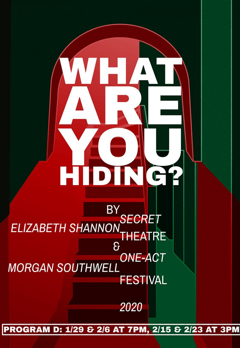 What are you hiding_Program D